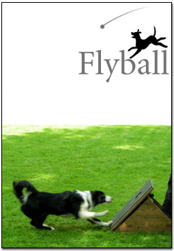 Flyball - Flights scheduled the first Saturday of every month.