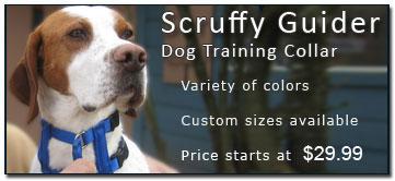 Scruffy Guider Collar
